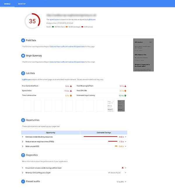 Screenshot of Google PageSpeed Insights