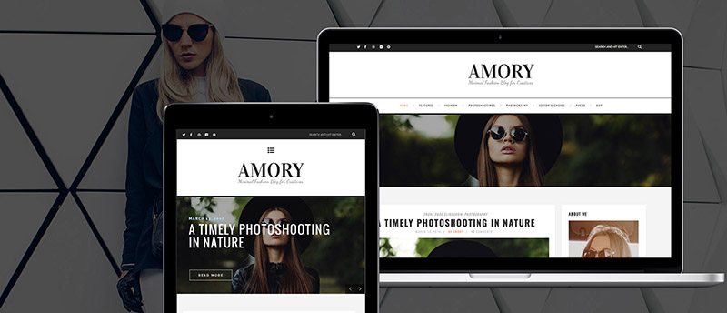 Amory - A Responsive WordPress Blog Theme - 4