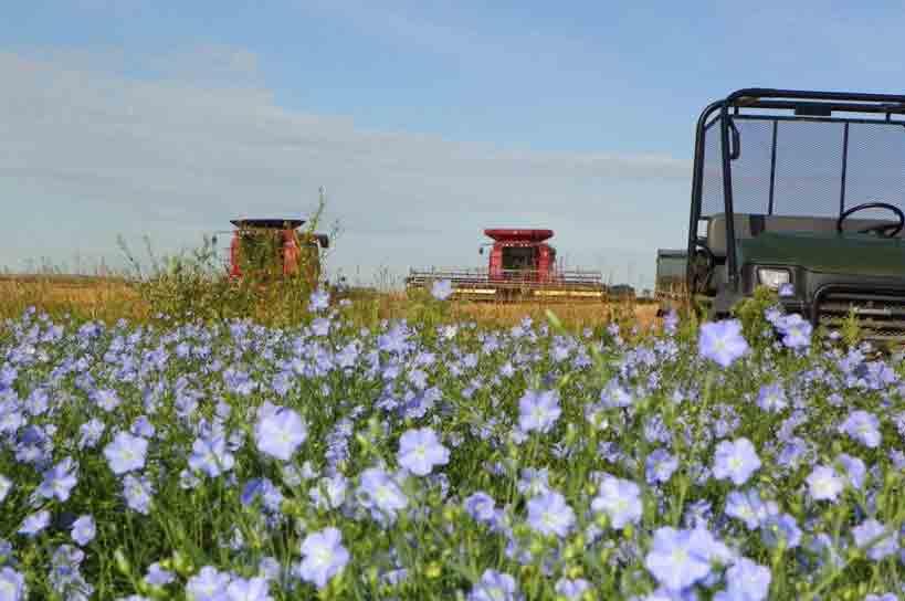 Flax-Field-Machines-2