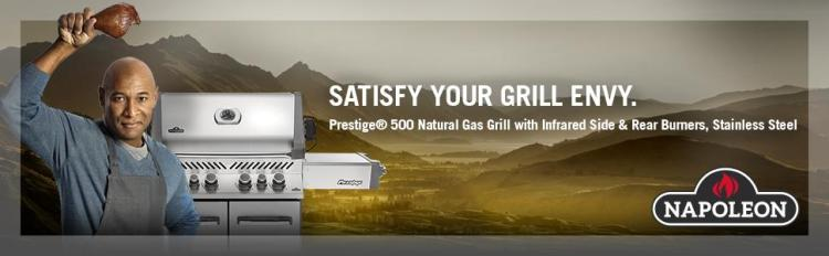 napoleon prestige p500 natural gas