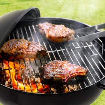 best grill for the money