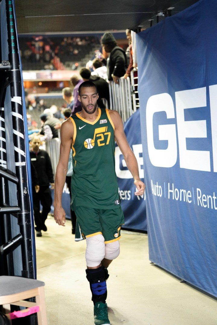 Defensive Player of the Year, Rudy Gobert