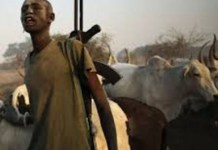 Fulani herdsmen abduct children civil servants lecturers in Ondo