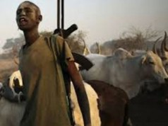 Fulani Herdsmen kills two teacher, four others in Benue