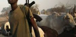 Herdsmen storm another Plateau village, murder 19 people in their sleep