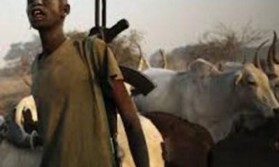 Suspected Fulani herdsmen kidnap 14 bus passengers in Osun State