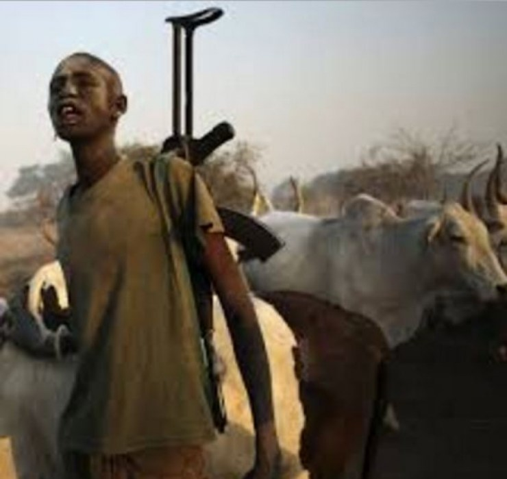 Scores of travellers allegedly kidnapped by Fulani herdsmen in Imo