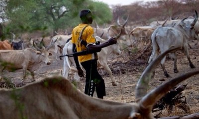 Benin Republic bans Fulani herdsmen from entering country