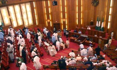 Nigerian Senate mandates Buhari to sack Dambazau, Malami