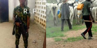 Fulani herdsmen kill young soldier in Benue, chop off his penis.
