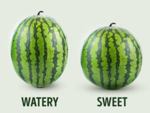 How to choose a ripe Watermelon4