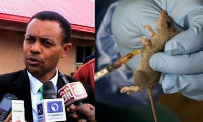 Lassa Fever Outbreak in Enugu