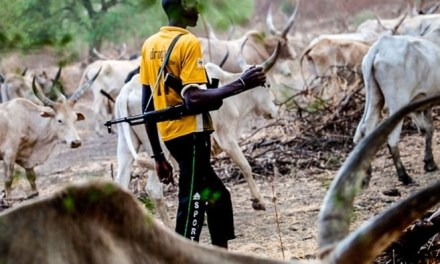 Breaking: Many declared missing as herdsmen strike in Benue