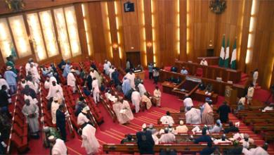 Nigerian Senate orders arrest of NDDC management over N2.6 billion palliative fraud