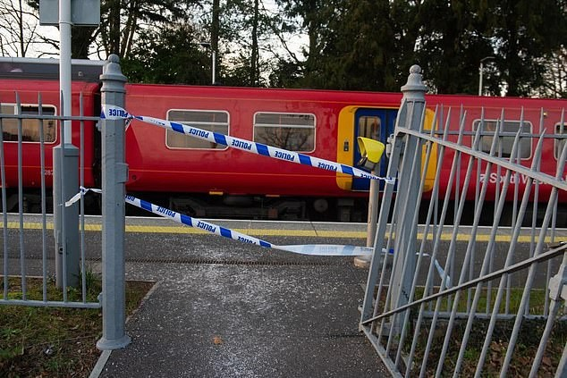 Passenger is stabbed to death on a train from Guilford to London