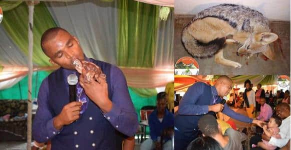 Pastor kills, eats animal raw during church service in Botswana