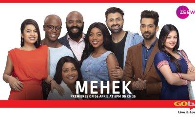 Mehek 18 June 2019 update