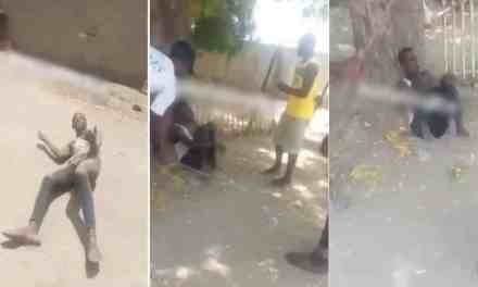 Woman catches a neighbor trying to defile her daughter in Borno (Video)