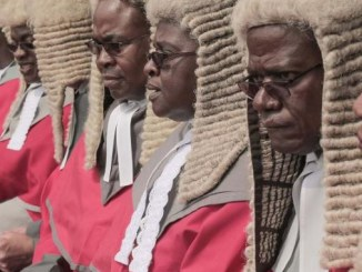 Zimbabwean govt under fire after spending thousands of dollars to import judges' wigs from UK