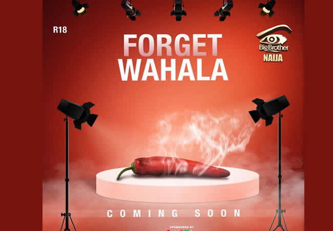 BBNaija 2019 kicks off June, tagged 'Forget Wahala'