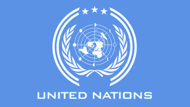 United Nations on sexual abuse