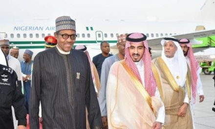 Islamic Cooperation to help Nigeria recharge Lake Chad