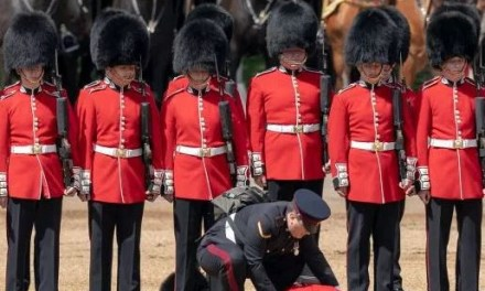 Two guardsmen faint during rehearsals for the Queen's birthday celebrations next week (Photos)