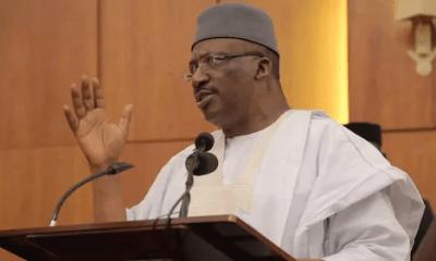 tribunal sacks Buhari's ex-minister's son