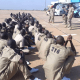 ex-Boko Haram fighters into the military