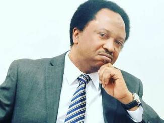 """Senator Shehu Sani calls Nigeria a """"Zigzag Republic"""""""