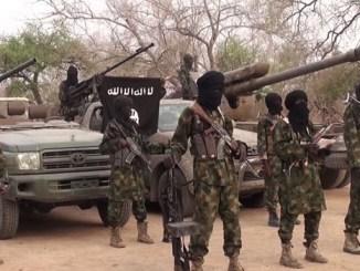 24 killed as Boko Haram terrorists attack Adamawa community