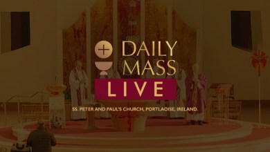 Catholic Live Daily Mass 17 April 2021 St Peter & Paul's Church Ireland