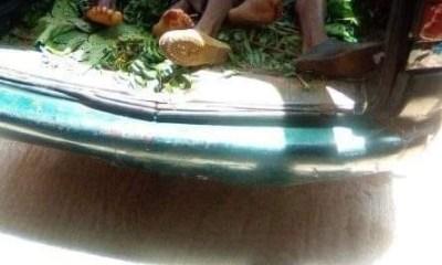 5 farmers killed as Fulani herdsmen invade Benue community