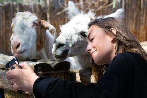 woman cuddling goats