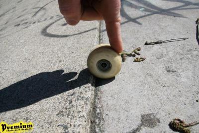 avoid pre-cast skate parks img_4190