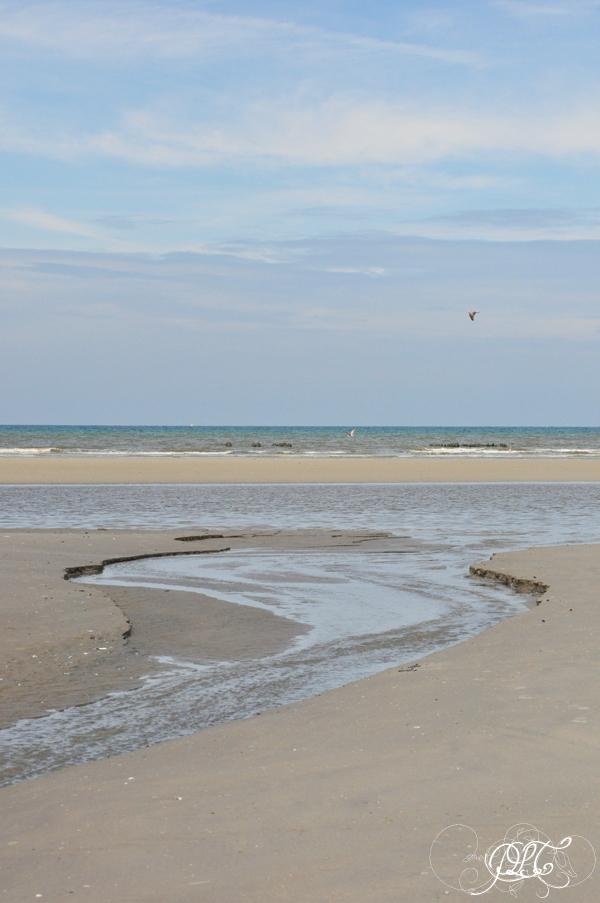 Prendre le temps - Voyager - Sentier d'accès à la mer - Saint-Quentin-en-Tourmont - Picardie