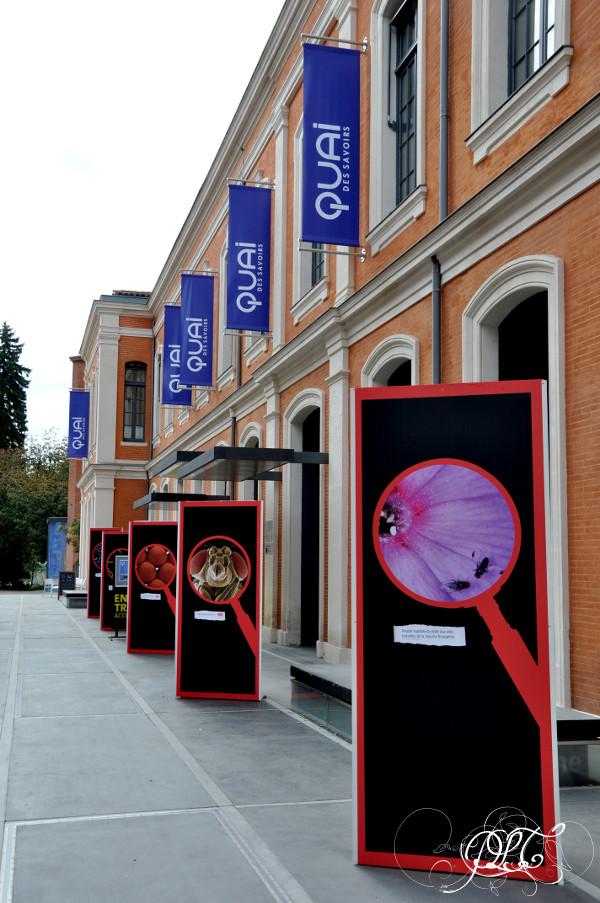 Prendre le temps - Quai des Savoirs - Toulouse