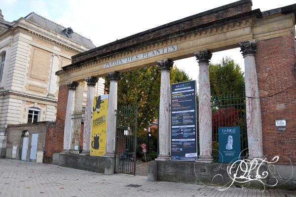 Prendre le temps - Exposition Chiens et Chats - Muséum de Toulouse - Allée Jules Guesde