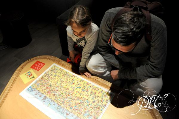 Prendre le temps - Exposition Chiens et Chats - Muséum de Toulouse