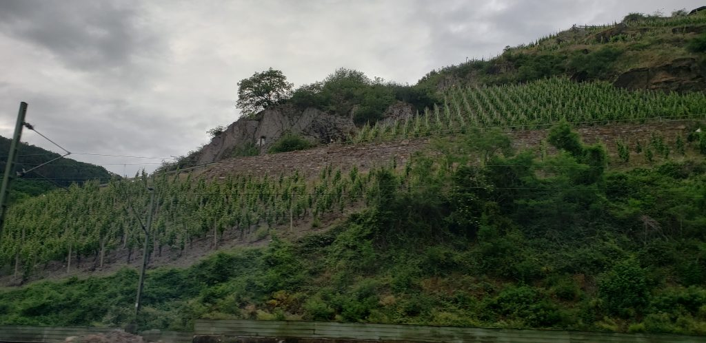 Mountainous Ice Wine vineyards along the side of the road