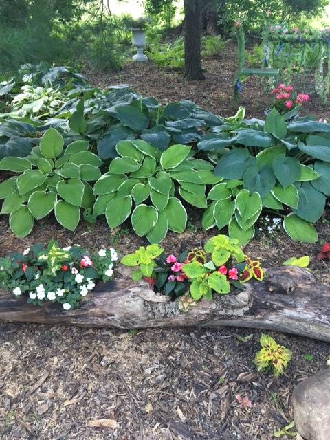 vintage garden log