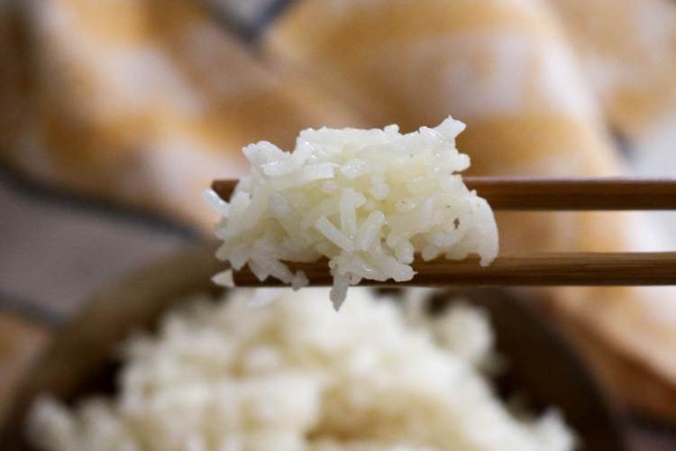 How to Cook Perfect Rice in the Electric Pressure Cooker (instructions for soaked Rice and Regular)