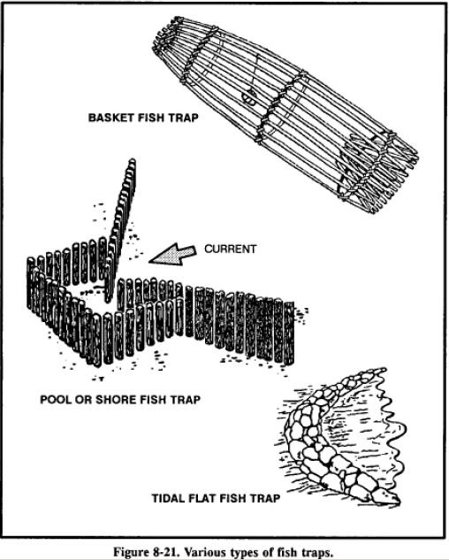 Here are some different ways to fish in a survival
