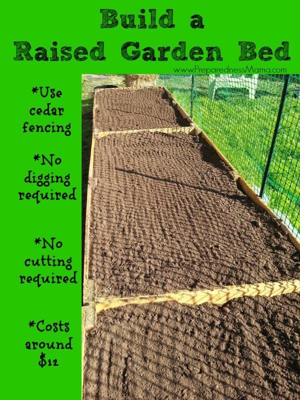 Build Raised Garden Bed