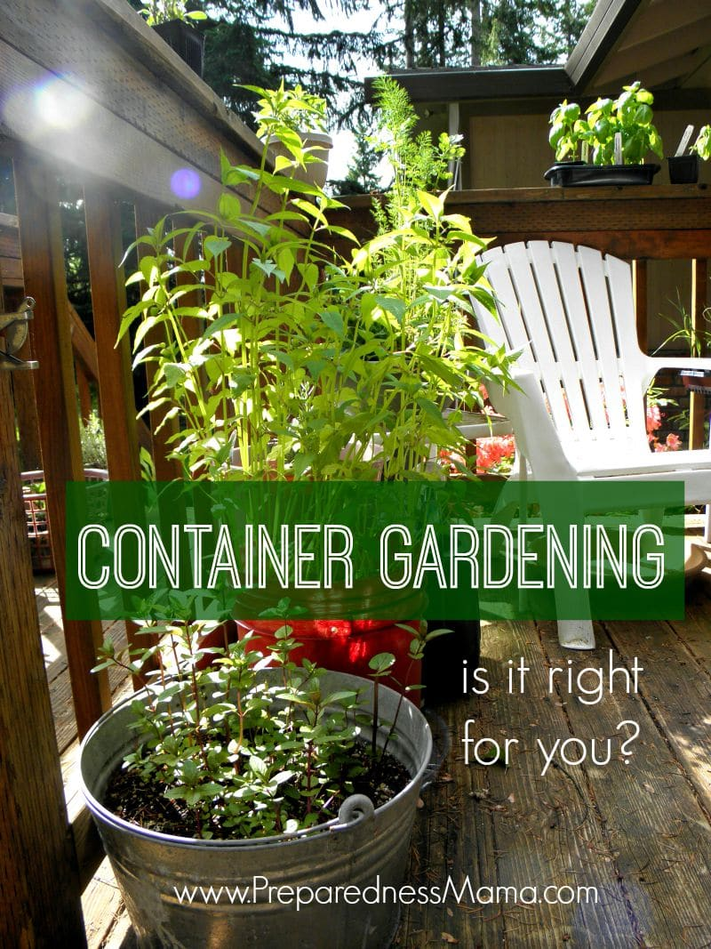 Is Container Gardening Right For You?  Preparednessmama