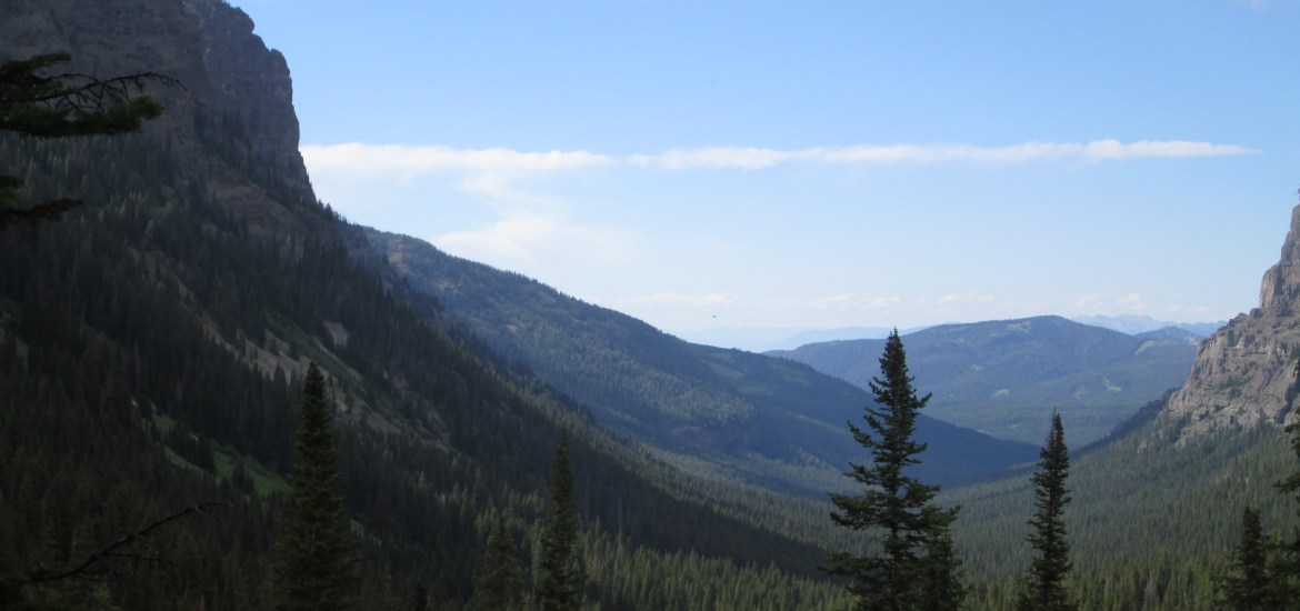 View of Hyalite Canyon from Hyalite Creek trail