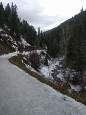 Bozeman Creek trail in March