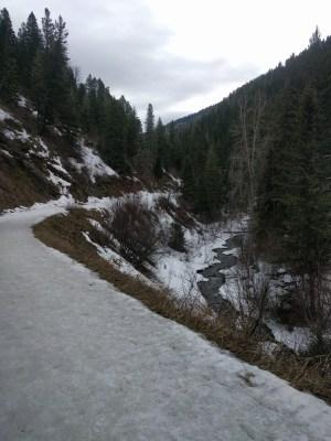 Bozeman Creek trail in March