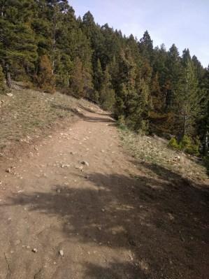 Drinking Horse trail, Bozeman MT