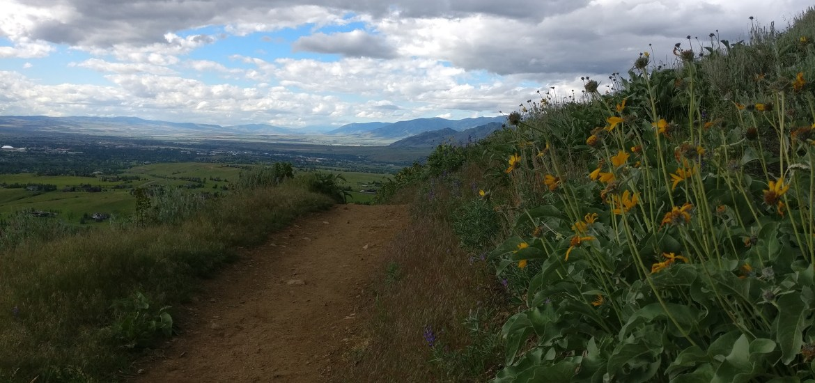 Triple Tree trail, Bozeman